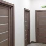 техно двери фото