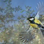 птицы в огороде