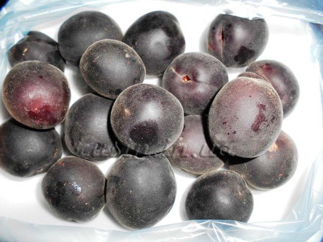фиолетовый абрикос