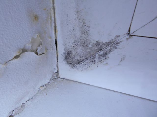 Заделка швов плитки на стенах в