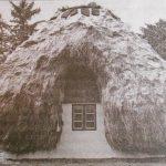 крыша из водорослей