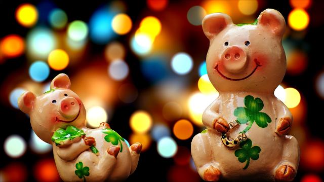 счастливый год Свиньи