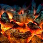 древесный уголь для комнатных растений