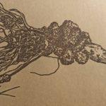 Корневой рак плодовых культур: описание и меры борьбы